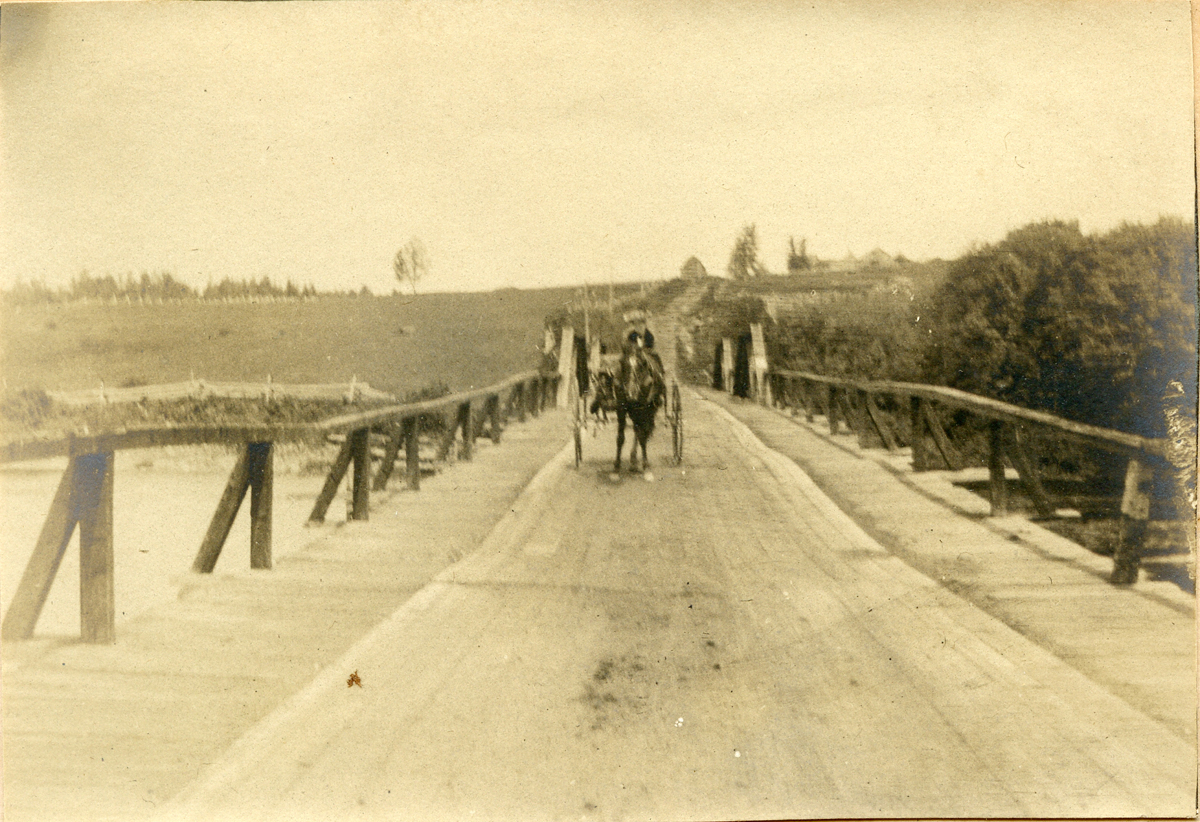 Nell Rebecca (Carroll) Thornton Driving a Carriage on Bridge to Winterville, Maine