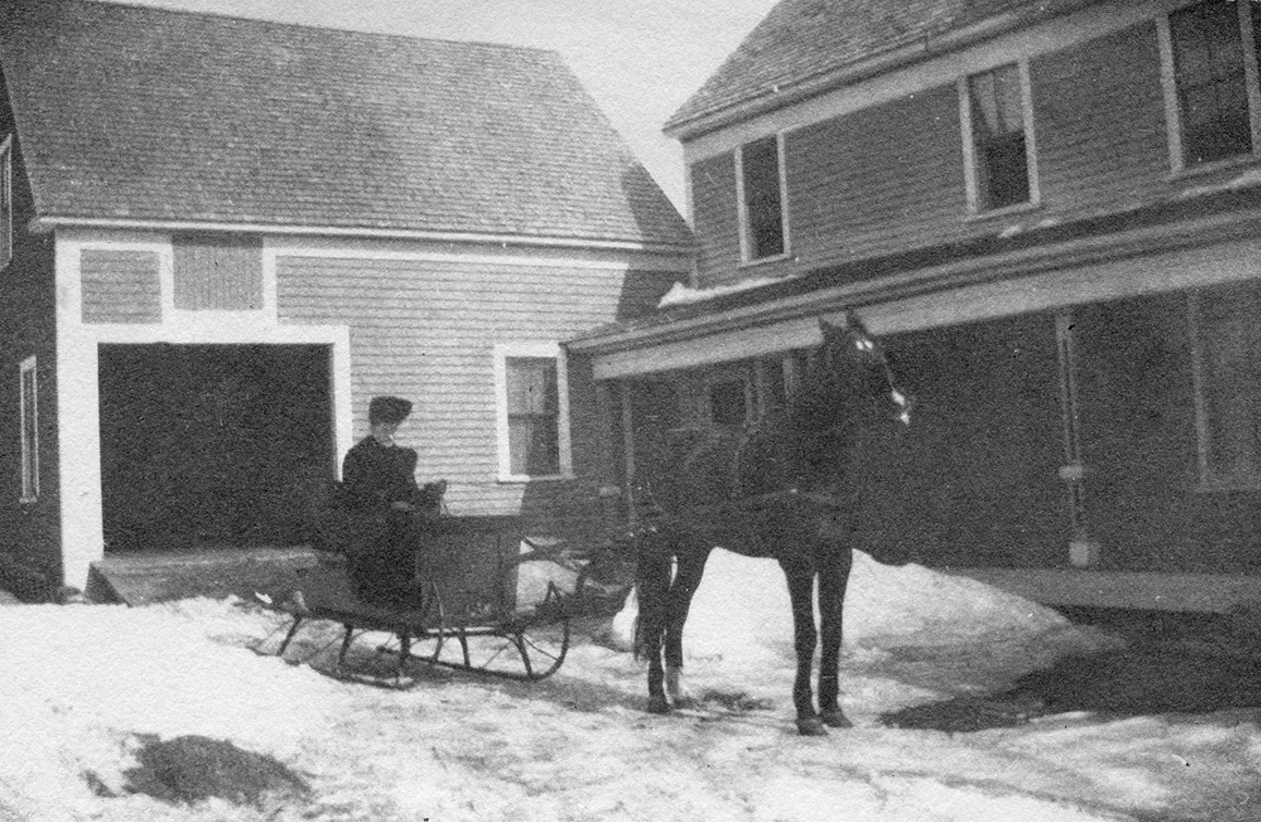 Nell Rebecca (Carroll) Thornton, Mrs. Seth Sprague Thornton Driving Sleigh with Prince at Houlton, Maine