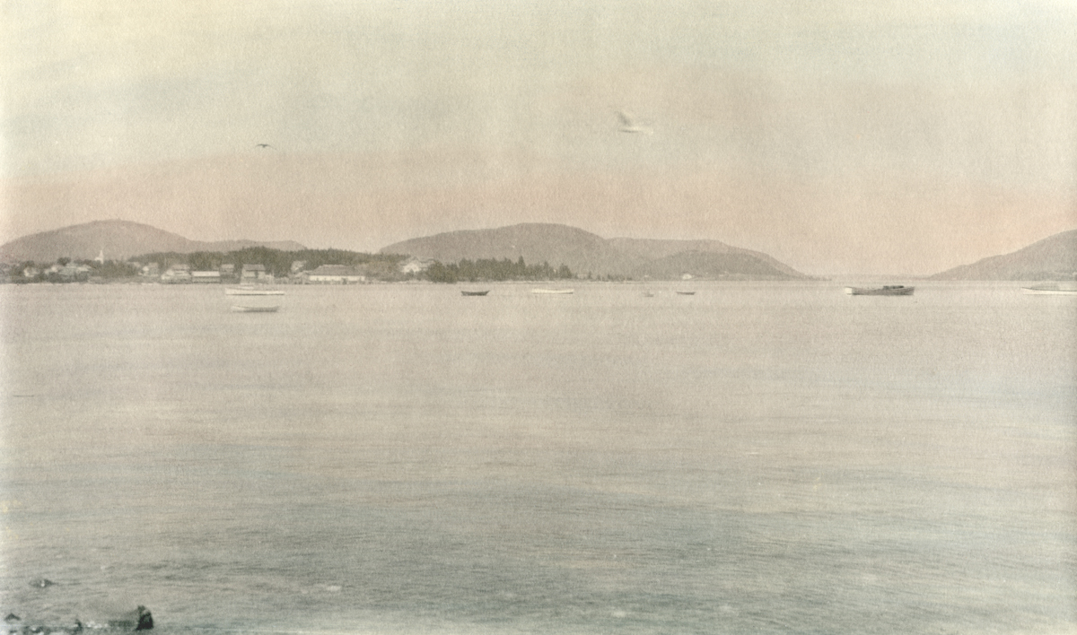 View from Manset to Clark Point - Tinted Photograph