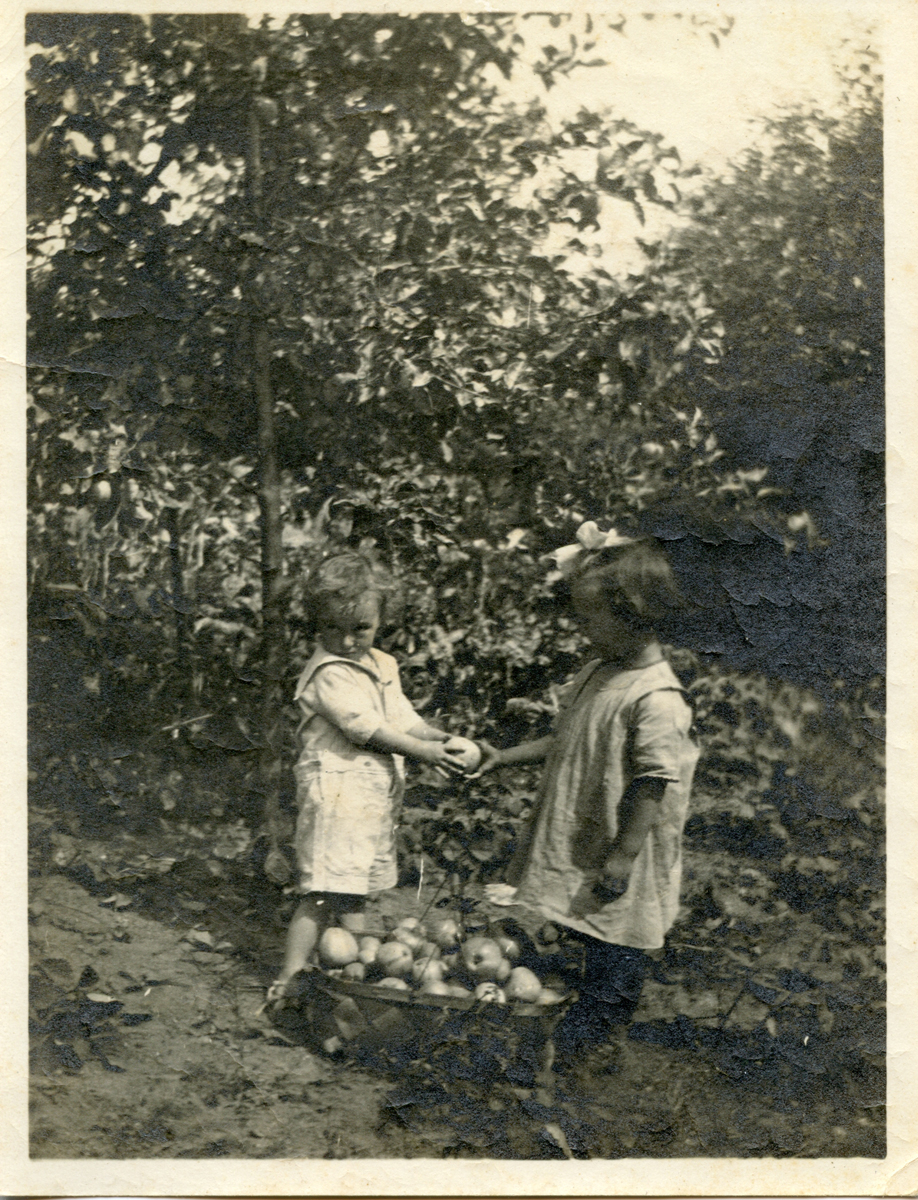 Marion E. Stanley and Friend, Lonny, Picking Apples