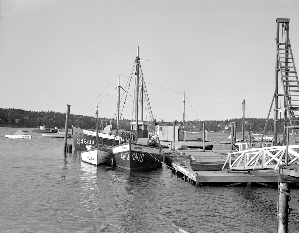 Draggers Sea Fox and Rose Marie and Pile-Driving Scow Little Abner at the Southwest Boat Corporation Dock