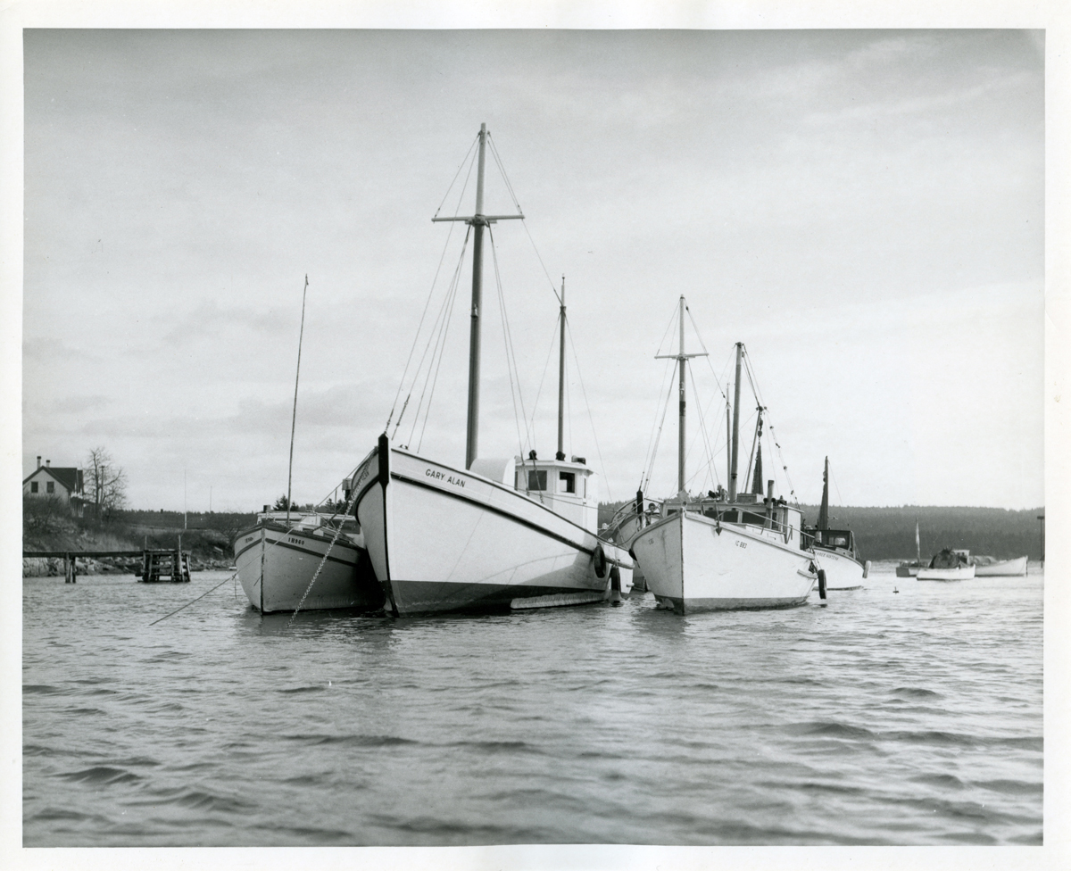 Sardine Carriers Gary Alan and Three Sisters at Winter Harbor, Maine