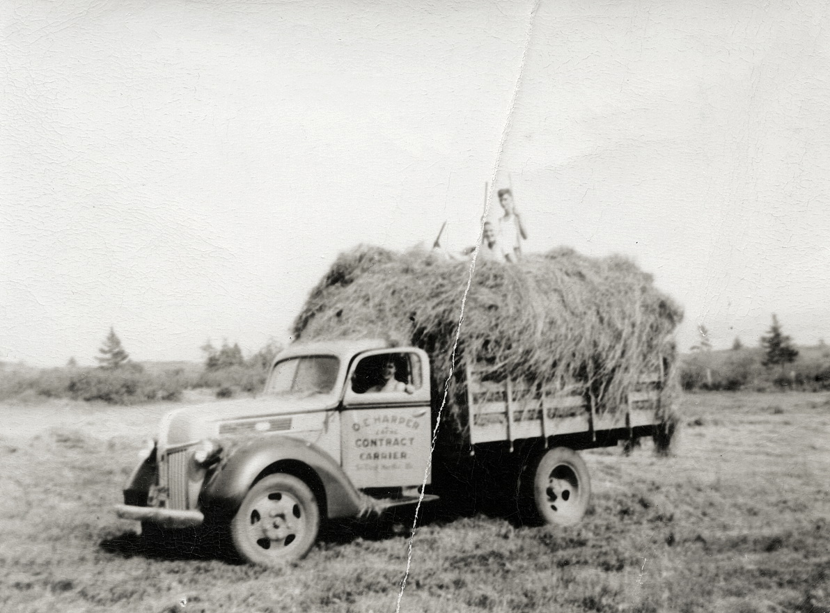 Osmond Emery Harper with David B. Benson and Katherine Gertrude Benson and a Load of Hay at Seawall