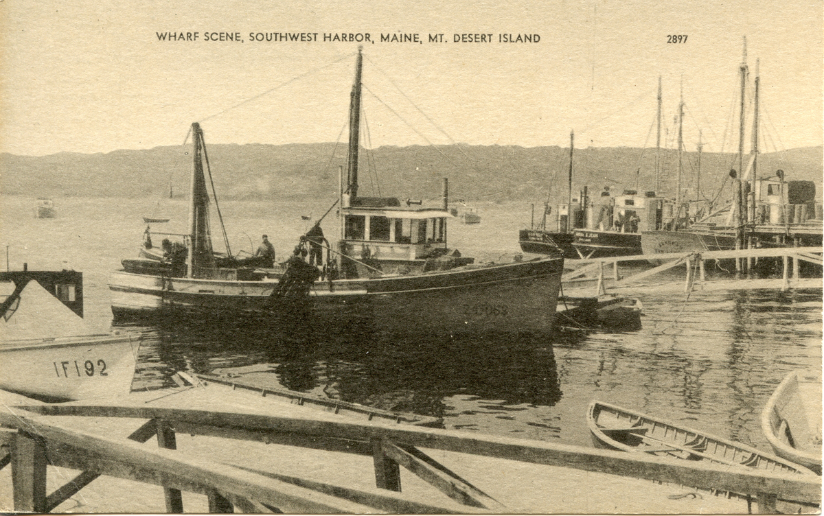 Sardine Boats at Southwest Harbor
