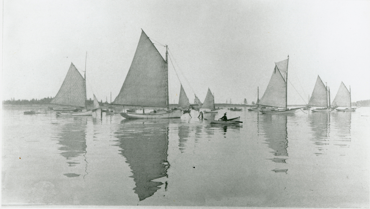 Vessels in the Harbor at Islesford, Cranberry Isles