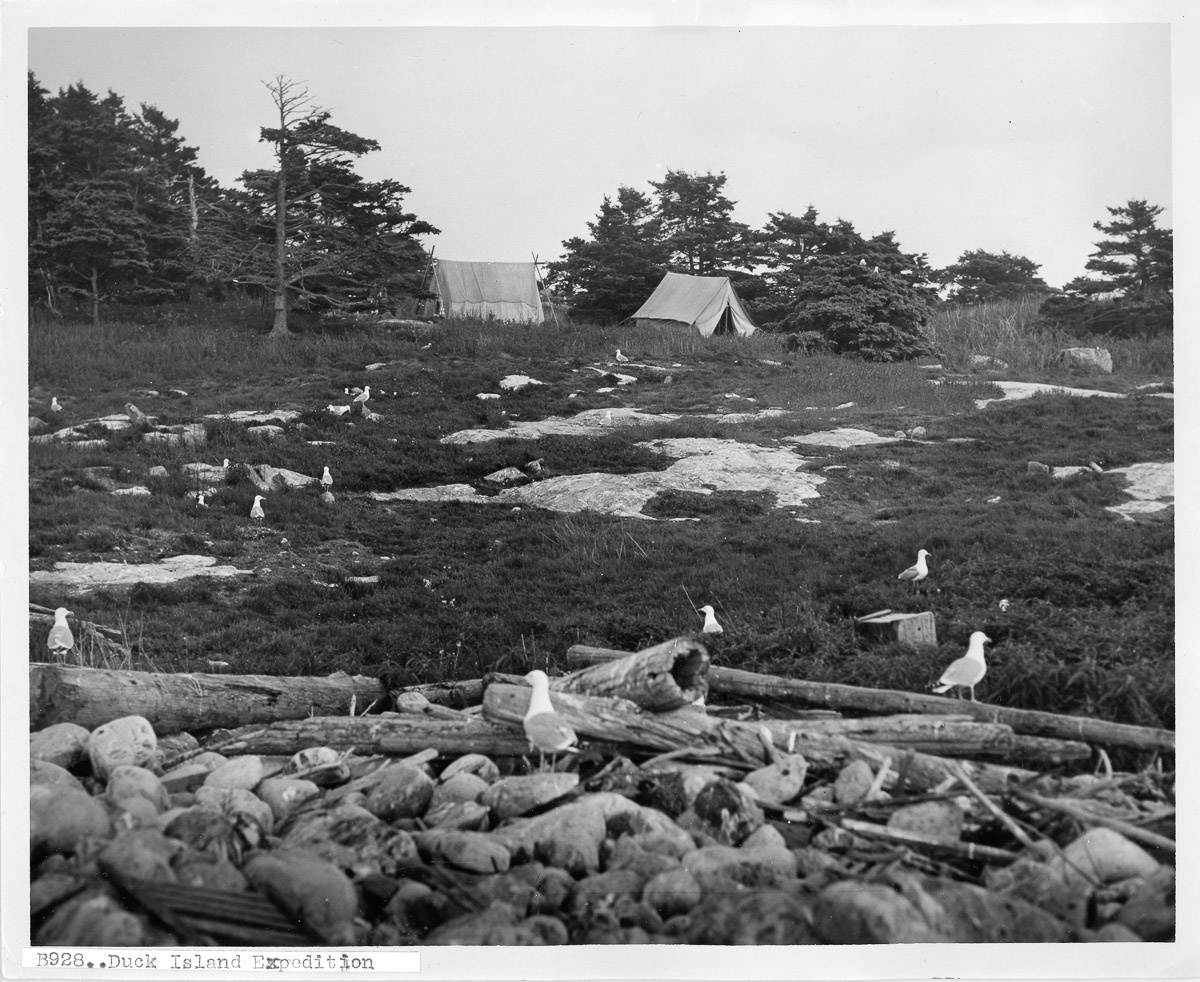 Camp Site on Little Duck Island