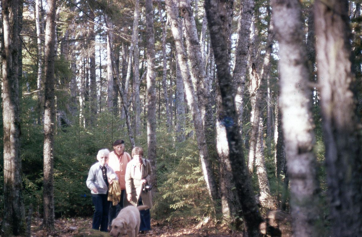 Dot Church, Dolf Portman, and Marianne New in the Woods of Placentia Island