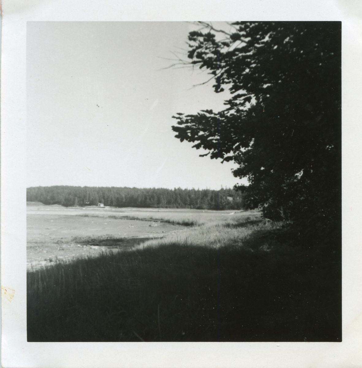 View of Norwood Cove from The Charlotte Rhoades House