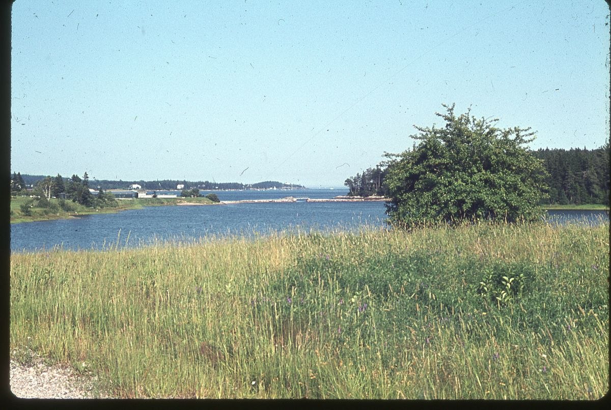 View Toward Mill Dam from Winifred Mann's Summer Home