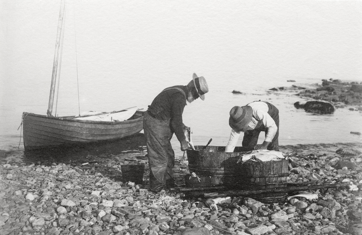 The Dolliver Brothers Cleaning Fish at Seawall