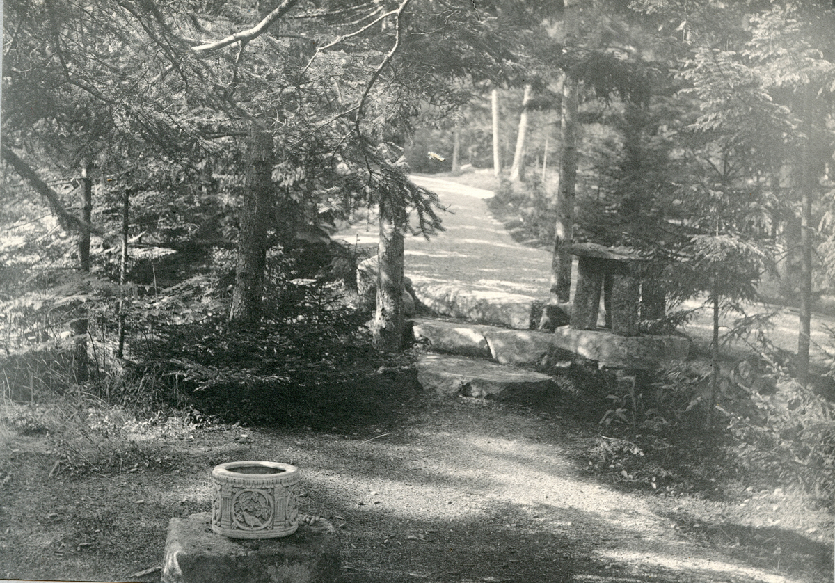 The Underwood Cottage - Squirrelhurst - Avenue and Steps with Stone Lantern