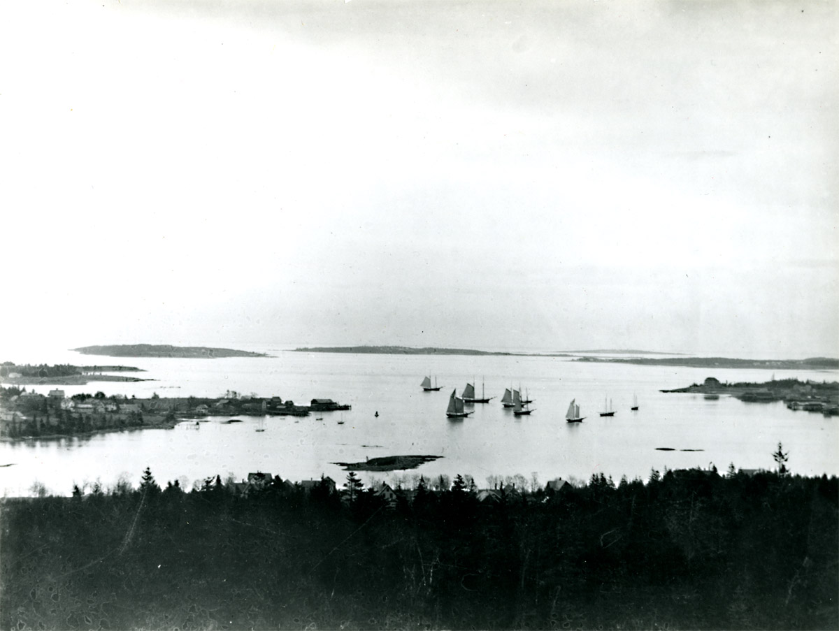 View of Fishing Boats in Southwest Harbor from Freeman Ridge