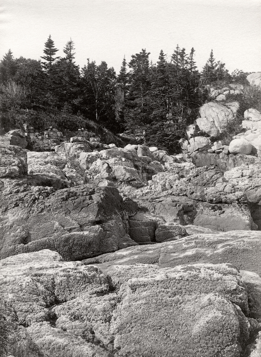 East of Seal Harbor