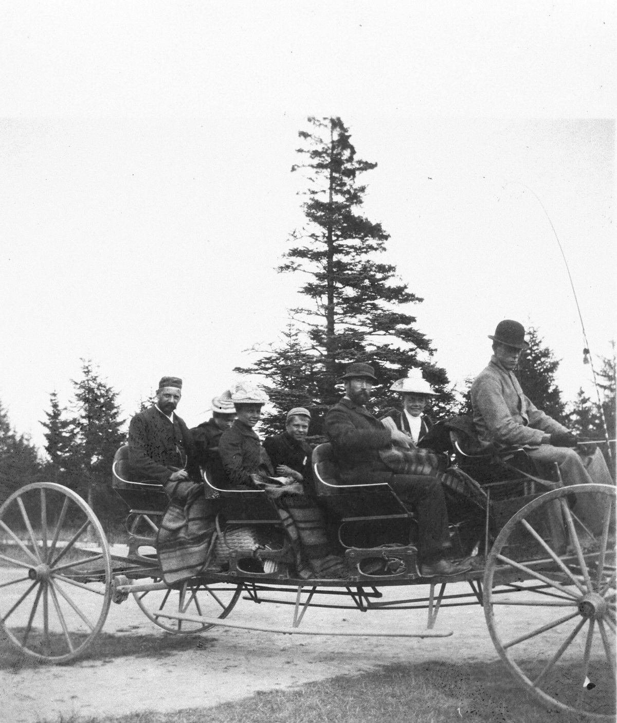 Buckboard Party with Driver in Derby Hat