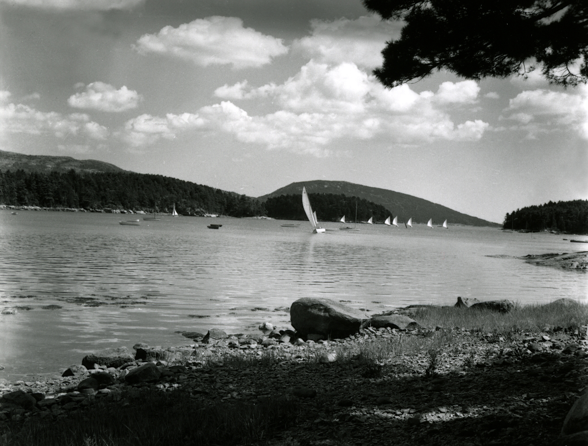 Sailboats - Looking South Down the Sound from Somesville
