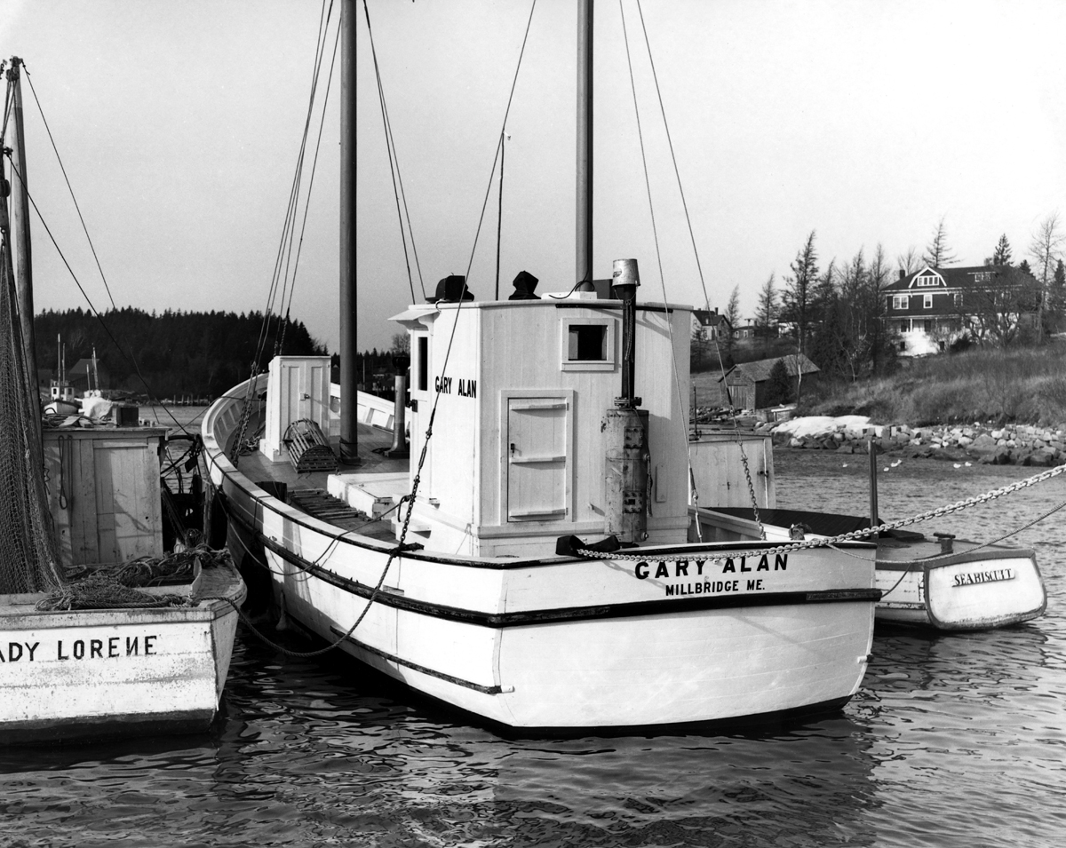 Sardine Carriers Lady Lurene, Gary Alan, and Seabiscuit in Winter Harbor