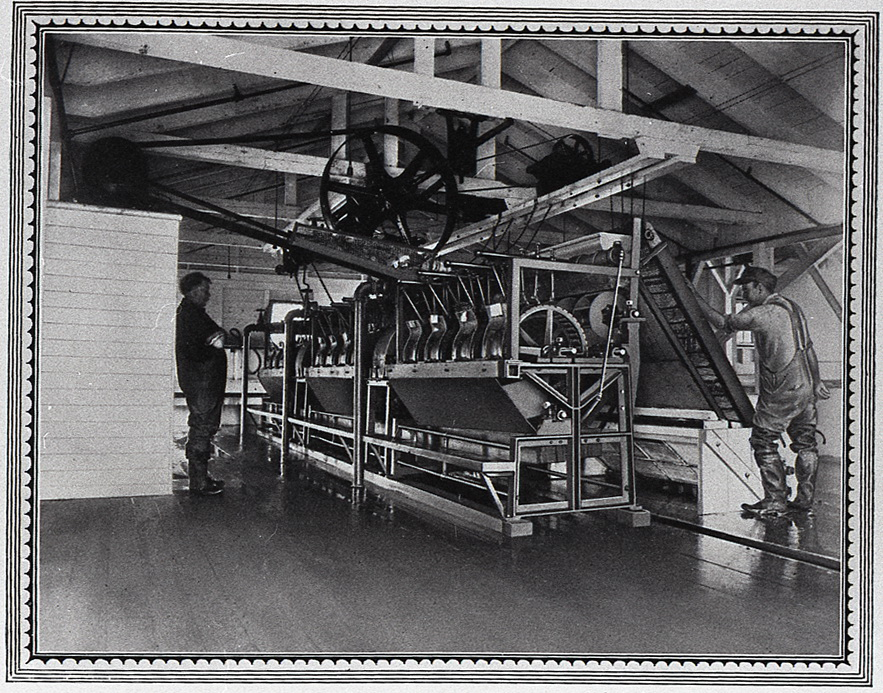 The Underwood Canning Factory at McKinley