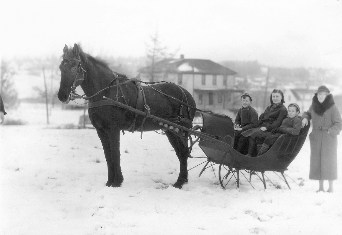 Christopher Wendell Lawlor's Family in a Sleigh