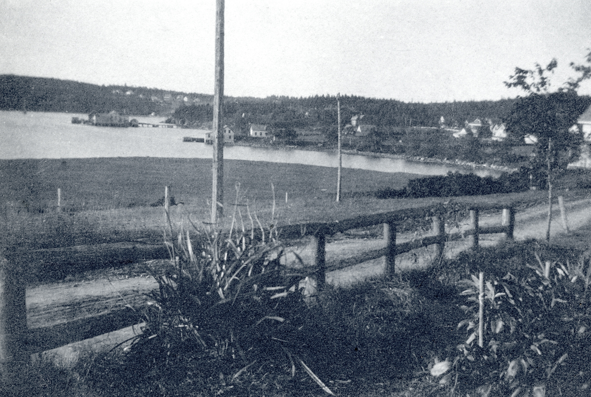 View from Rebecca (Whitmore) Lurvey Carroll's House on High Road, Southwest Harbor