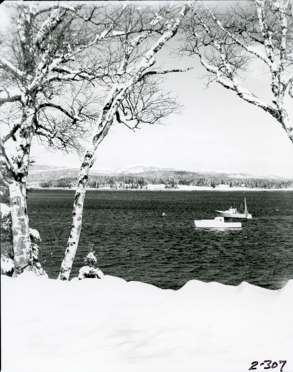 View of Greening Island Across from Manset in Winter