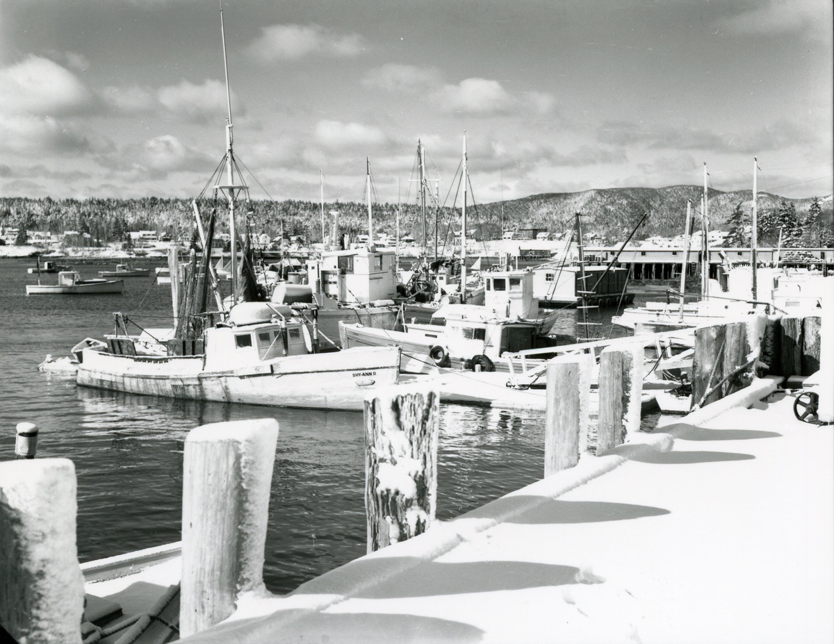 Fishing Vessels at Southwest Harbor from Clark Point