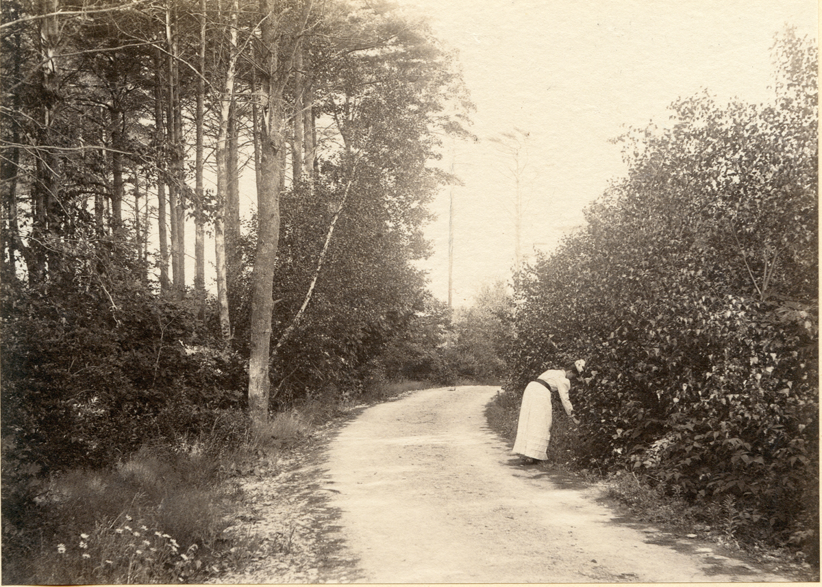 Woman on Bay State Road, Pigeon Cove
