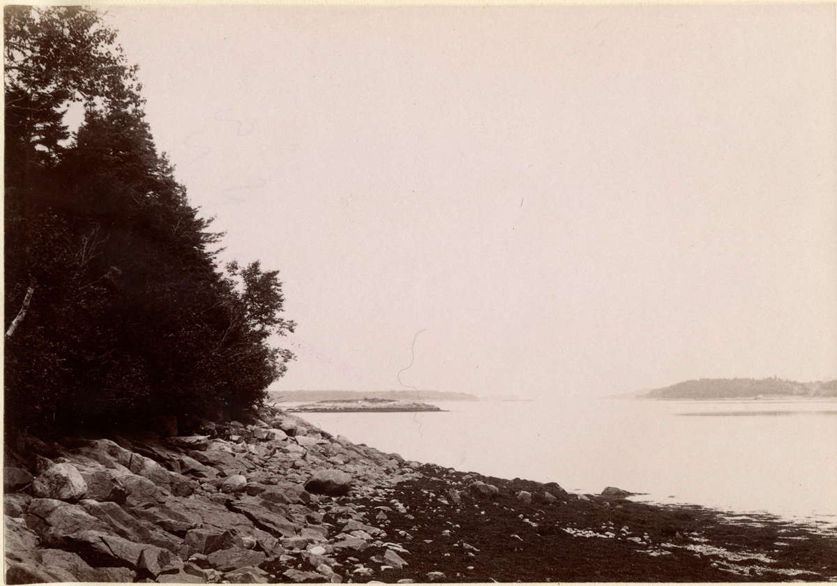 Looking North from Bartletts Island