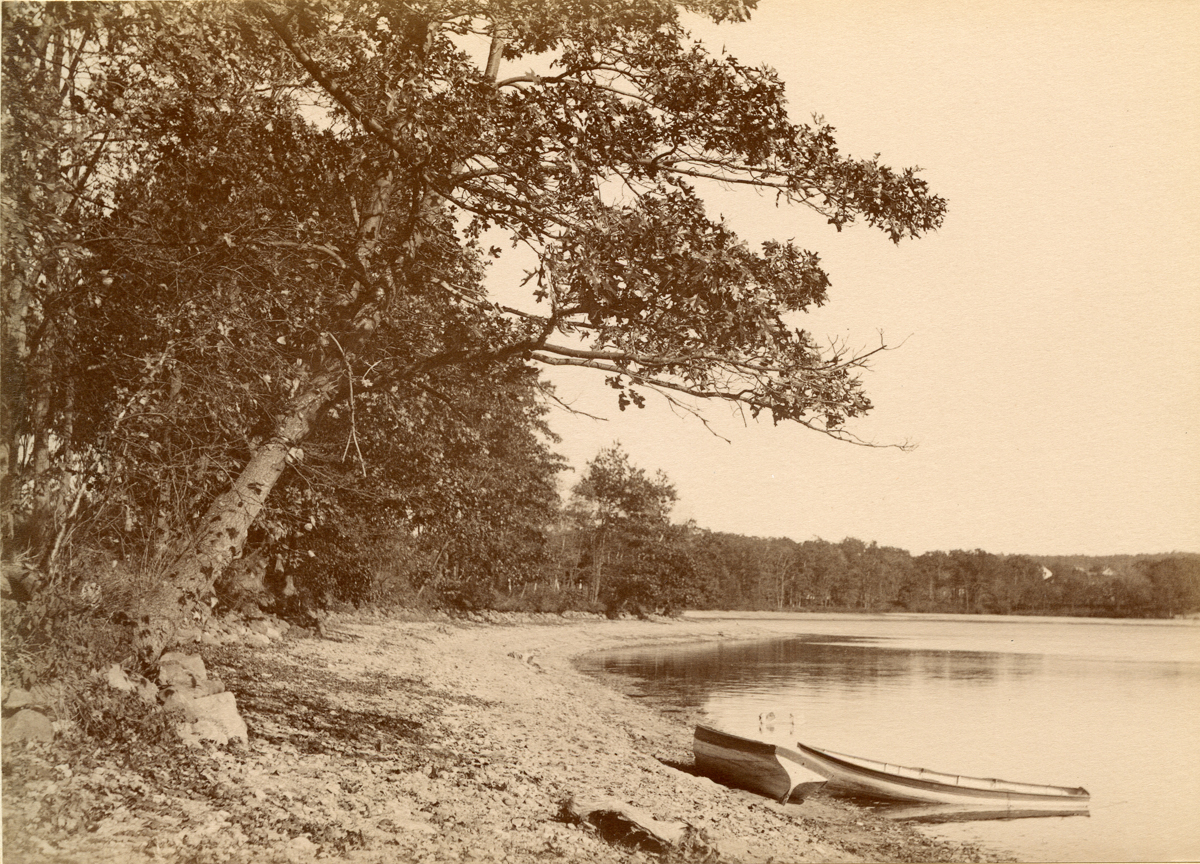 On the Shore at Mystic Pond