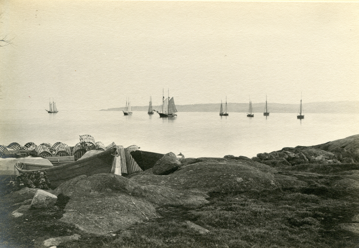 The Outer Harbor of Gloucester