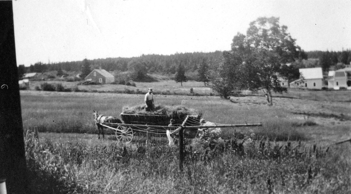 William Holden Whitmore Haying at the Whitmore Farm