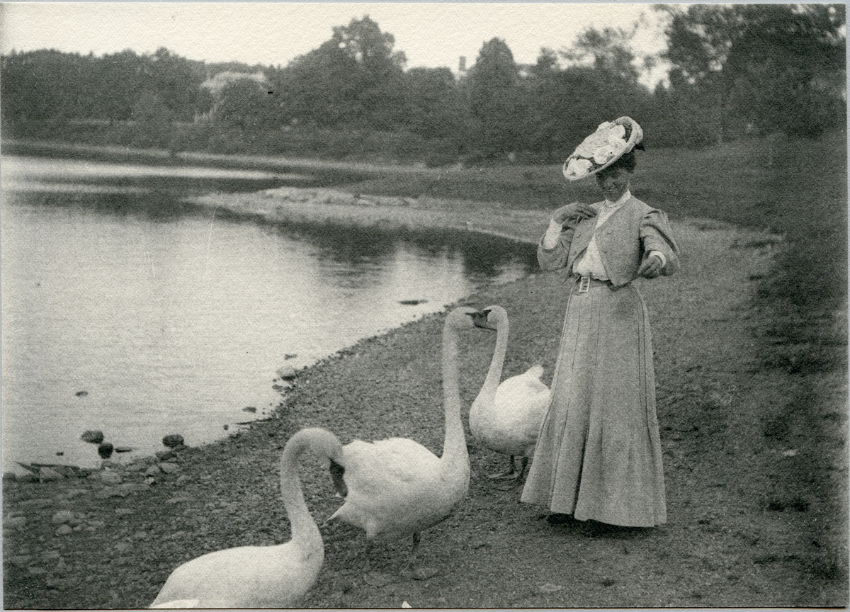 Marion Quincy Winslow Rand and Swans at Jamaica Pond