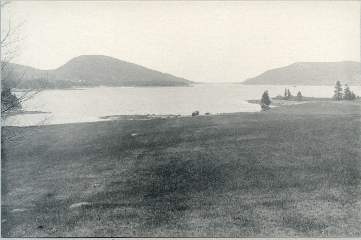View South from the Head of Somes Sound