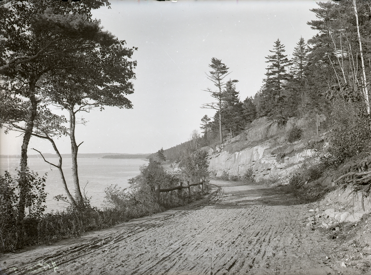 View North from Sargent Drive on Somes Sound