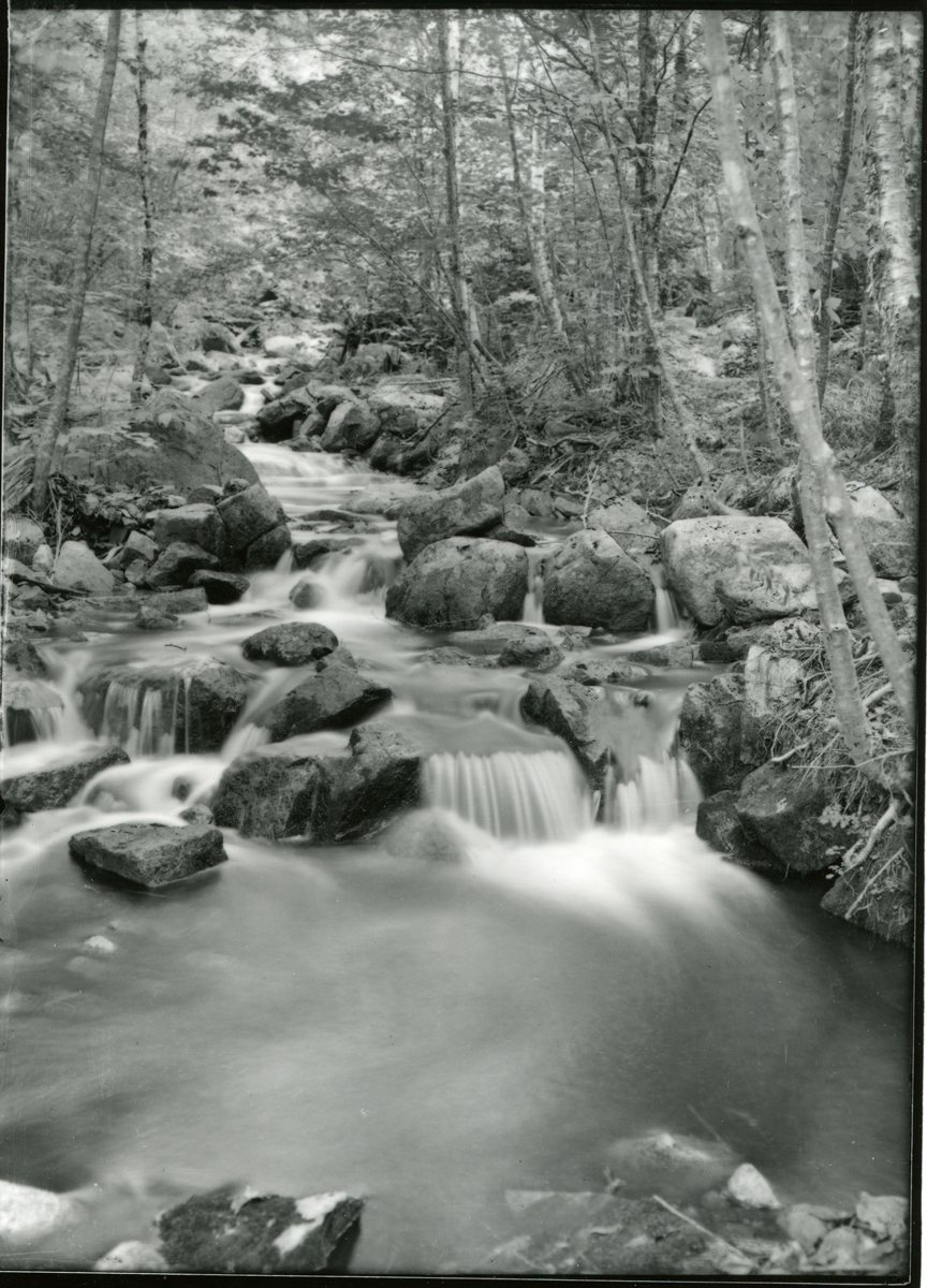Jordan Stream and Trout Brook - Before Park Creation in 1916